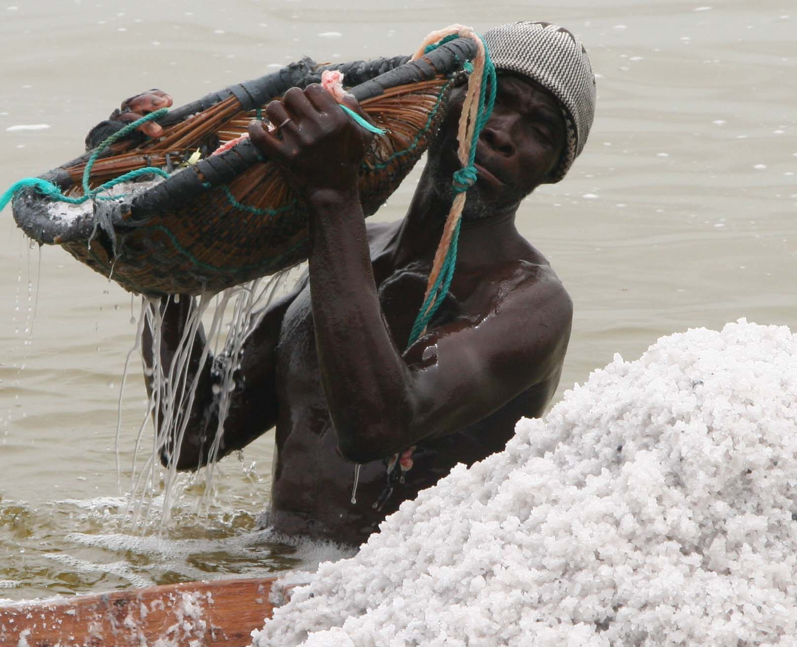 Salt Collector in Lake Retba