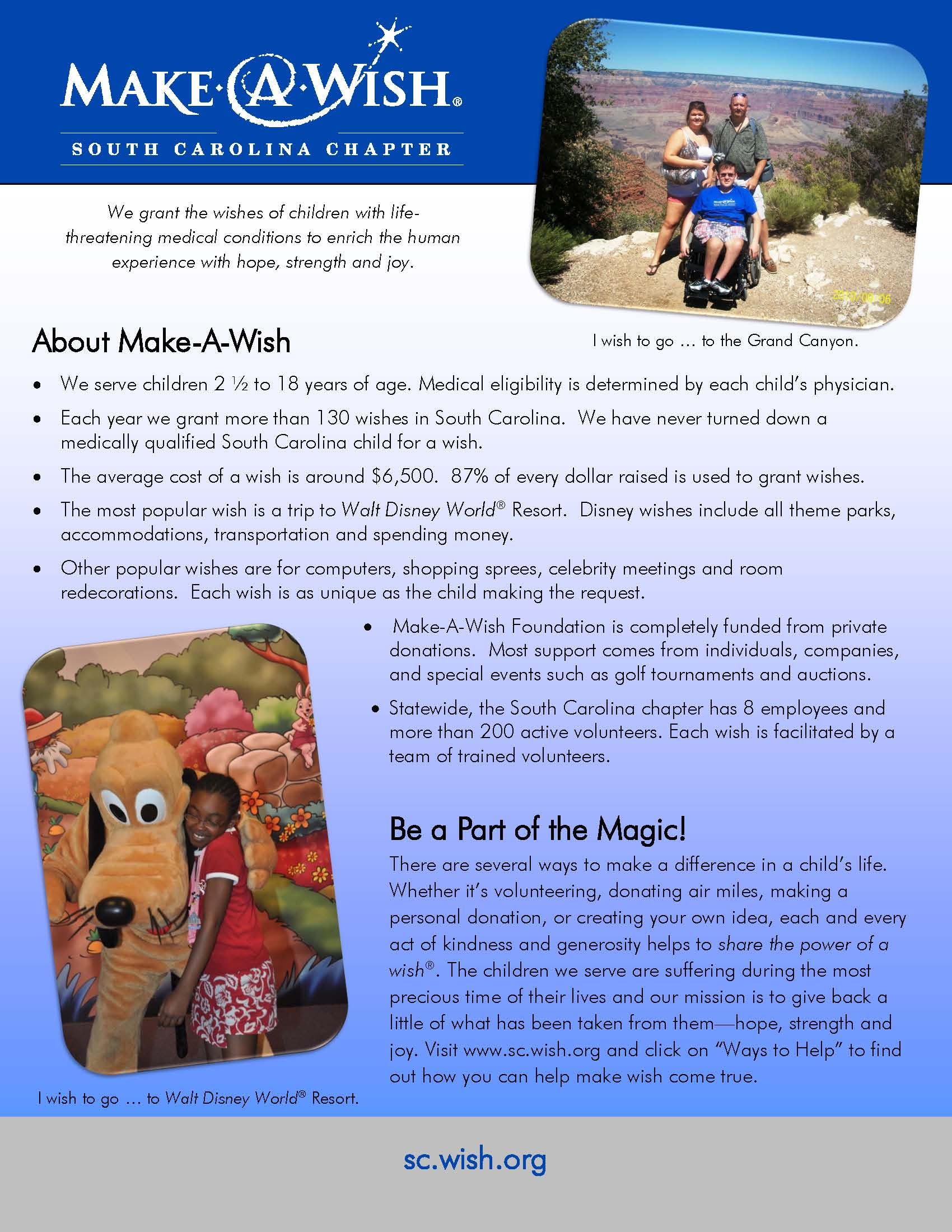 Make a Wish Informational Flyer, South Carolina
