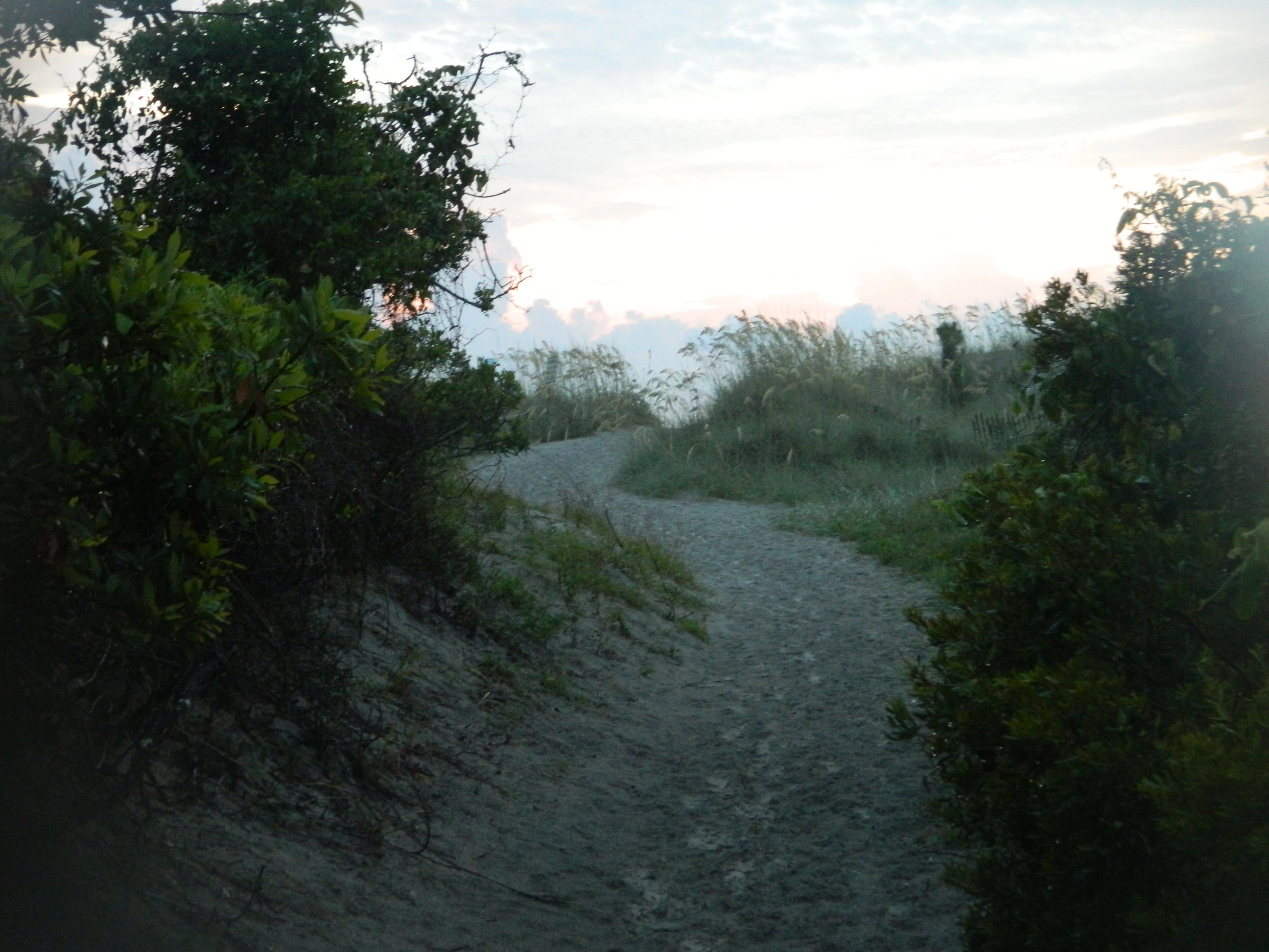 sandy path leading to the beach at Hunting Island, SC
